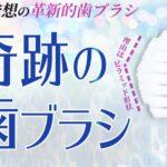 奇跡の歯ブラシの商品画像