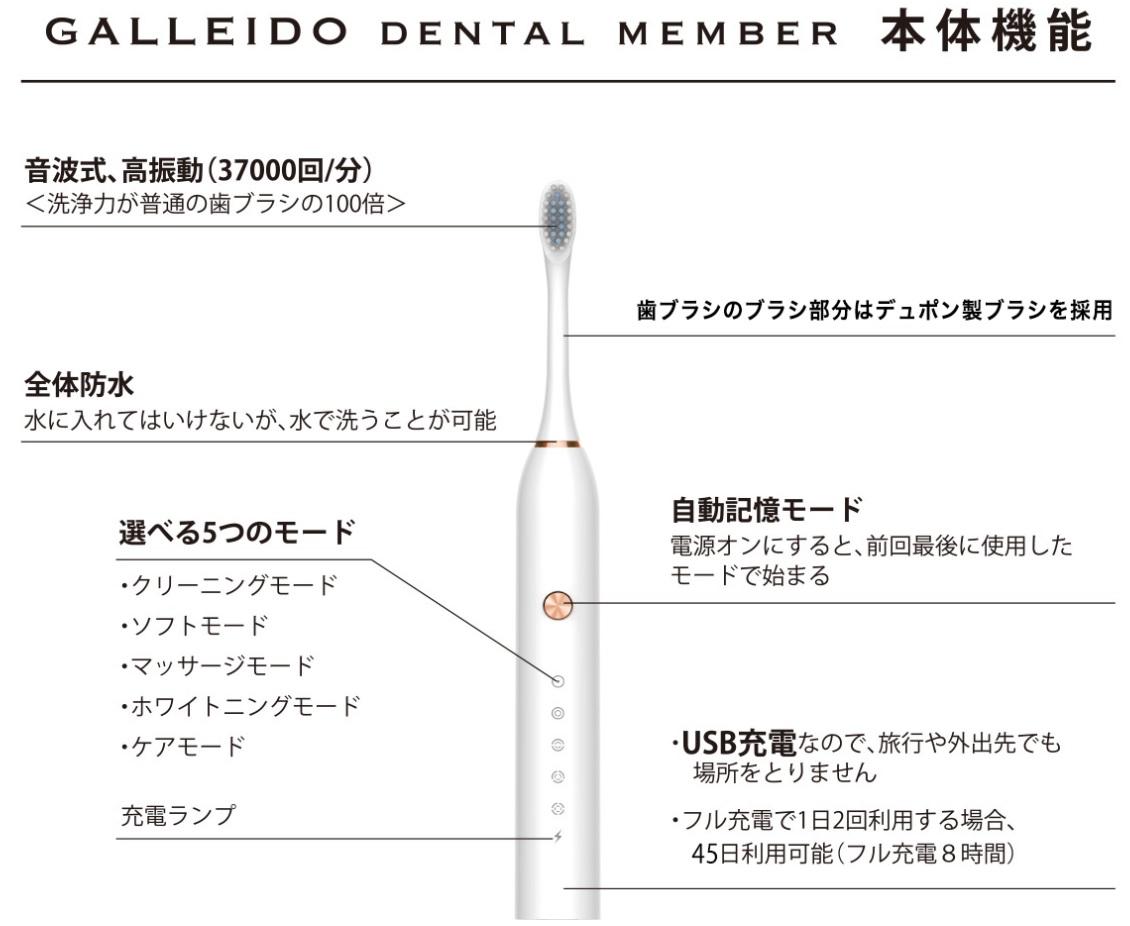ガレイドデンタルメンバー音波電動歯ブラシの商品画像